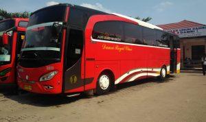 Bus Tujuan Jawa Lampung