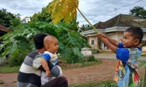 Aneka Ramuan Obat Tradisional Untuk Gangguan Pada Pencernaan Anak