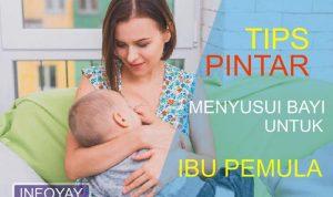 Tips Pintar Menyusui Bayi Untuk Ibu Pemula